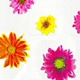bright flower pattern non toxic peva shower curtain